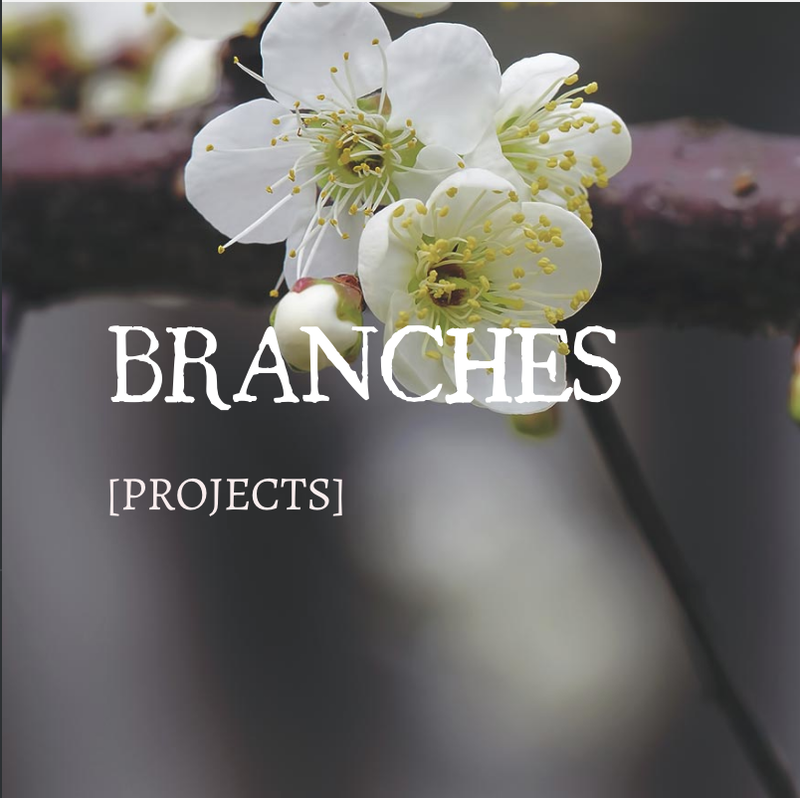BRANCHES/PROJECTS