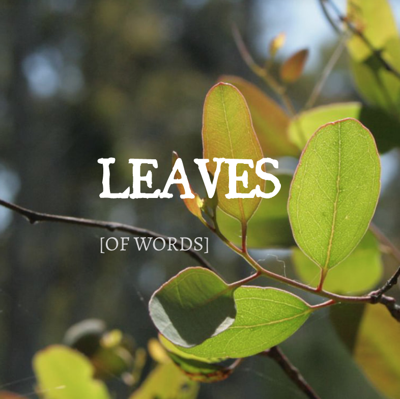 LEAVES/WRITING